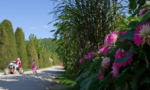 Services Locations de Kart Vélos et Canoës au Camping Le Paradis