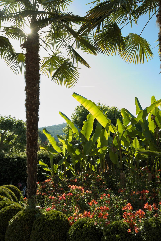 Camping Le Paradis – Blog La nature s'éveille -Palmiers