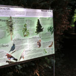 Camping Le Paradis - Blog La nature s'éveille -Panneaux interprétation biodiversité
