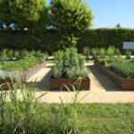 les bacs du jardin aromatique